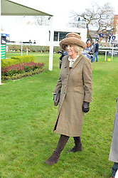 NEWBURY, ENGLAND 26TH NOVEMBER 2016: HRH The Duchess of Cornwall at Hennessy Gold Cup meeting Newbury racecourse Newbury England. 26th November 2016. Photo by Dominic O'Neill