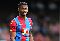 Fraizer Campbell of Crystal Palace