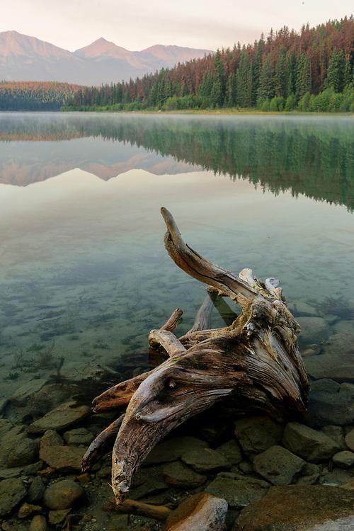 North America, Canada, Canadian,Alberta, Rocky Mountains, Jasper National Park, UNESCO, World Heritage, Patricia Lake at dawn