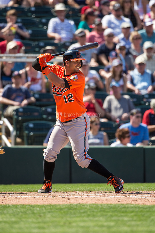 FORT MYERS, FL- MARCH 13: Dariel Alvarez #12 of the Baltimore Orioles bats against the Minnesota Twins during a spring training game on March 13, 2016 at Hammond Stadium in Fort Myers, Florida. (Photo by Brace Hemmelgarn) *** Local Caption *** Dariel Alvarez