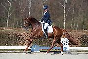Jonna Schelstraete - Chicago M.H.<br /> Selectie WK Jonge Dressuurpaarden 2013<br /> © DigiShots