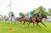 Radnor Hunt Races 2017
