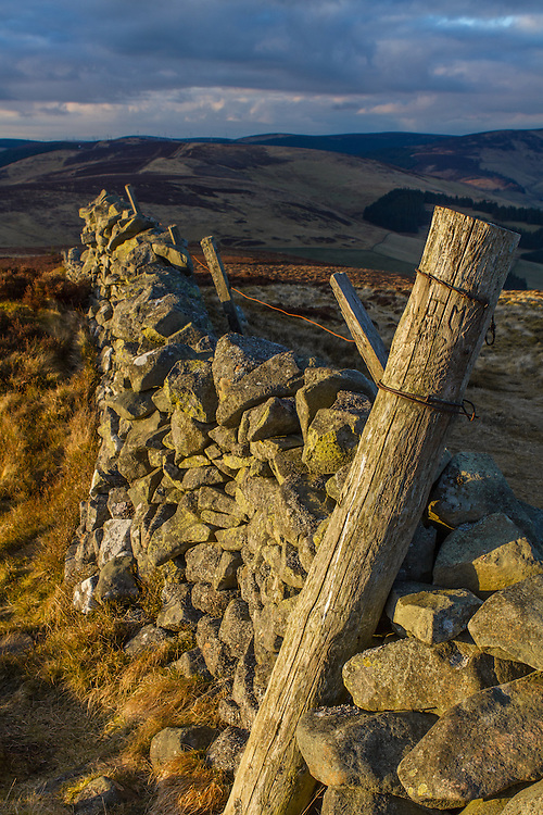 A Dyke wall leading of into the distance atop Lee Penn in the Scottish Borders