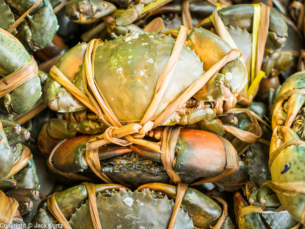 15 JULY 2014 - BANGKOK, THAILAND:   Live crabs trussed and ready to cook at Sornthong Seafood Restaurant on Rama IV in Bangkok. Sornthong Seafood is a Thai-Chinese style restaurant.    PHOTO BY JACK KURTZ