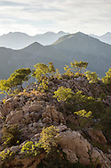 Trees atop a rocky peak on a late summer day high above Kotor, Montenegro <br />