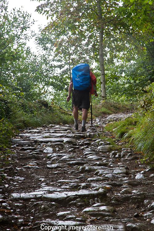 walking to La Faba, along the Camino to Santiago de Compostela