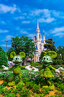 Mickey and Minnie Mouse topiaries, Magic Kingdom, Walt Disney World, Orlando, Florida USA