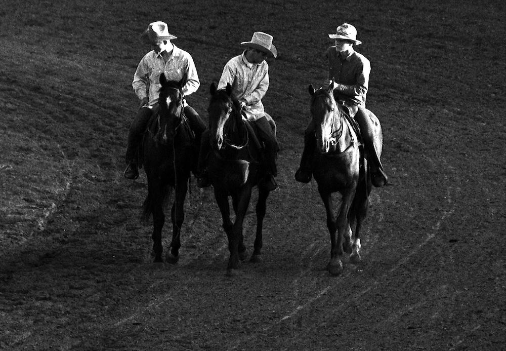 Black & White Photograph Rodeo Cowboy Outriders, Ponoka Stampede, Alberta Canada