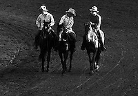 Black & White Photograph Rodeo Cowboy Outriders, Ponoka Stampede, Alberta Canada