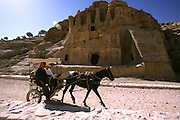 Horse cart entering Petra