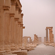 Colonnade at Palmyra, just after a desert sandstorm