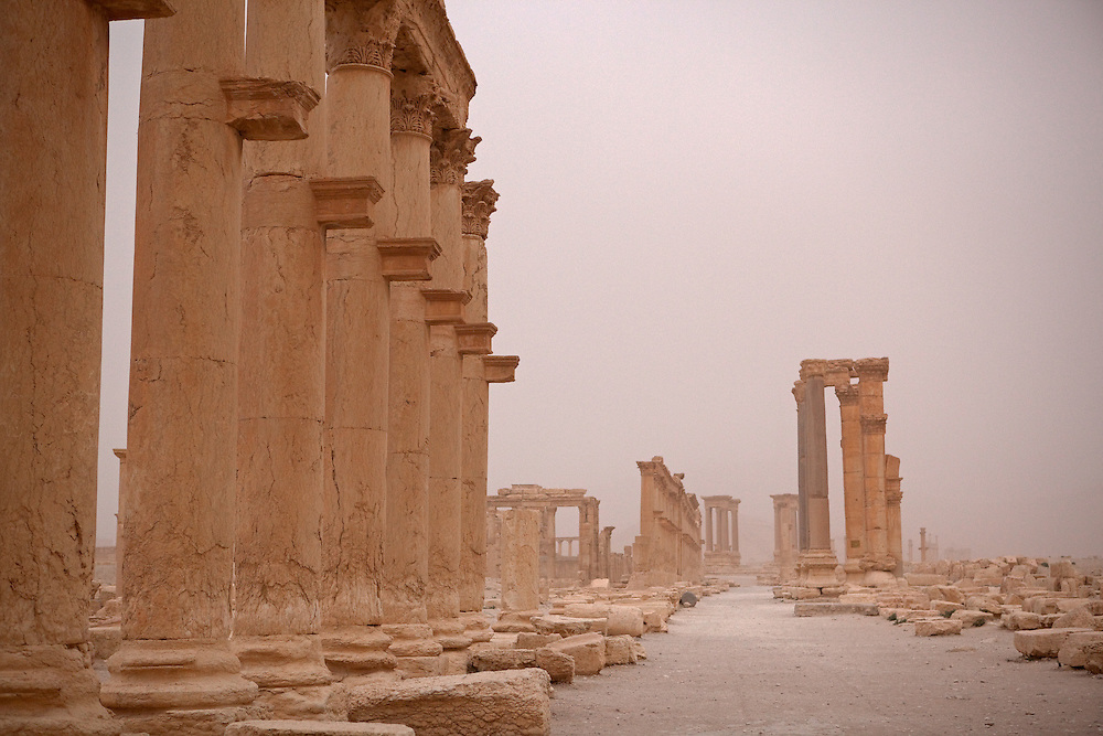 Colonnade at Palmyra, just after a desert sandstorm