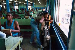 HAVANA, CUBA - AUGUST 24, 2001 - Workers hand roll cigars at the La Corona factory in Havana. (PHOTO © JOCK FISTICK)