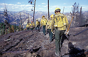Idaho, Hot Creek Fire, Boise National Forest, Lowman District, July, 2003..fire crew carrying tools walking downhill through the burn, ash and burnt snags. blue sky-clouds in background. fire packs visible.