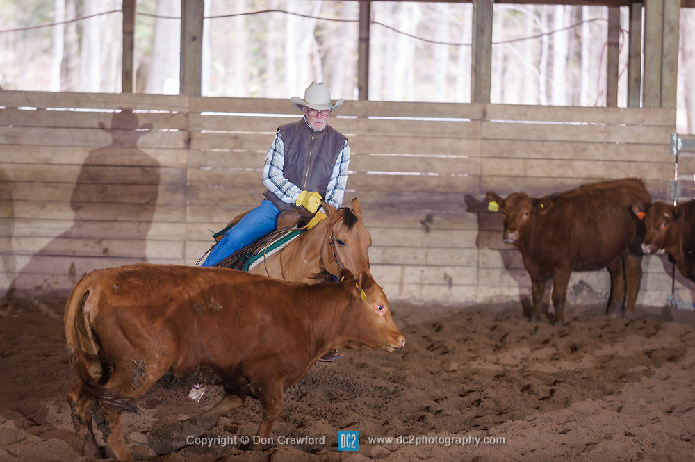 April 29 2017 - Minshall Farm Cutting 1, held at Minshall Farms, Hillsburgh Ontario. The event was put on by the Ontario Cutting Horse Association. Riding in the 25,000 Novice Horse Non-Pro Class is Don Vincent on Lil Hypnotic owned by the rider.