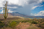 Distant storm clouds bring rain to the mountains near Apache Lake