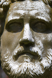 magnificent statue of a bearded man's face