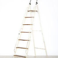 Metal & wood ladder. We bring the ladder you do the climbing