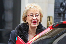© Licensed to London News Pictures. 05/02/2019, London, UK. Andrea Leadsom - Lord President of the Council and Leader of the House of Commons arrives in Downing Street for the weekly Cabinet meeting. Photo credit: Dinendra Haria/LNP