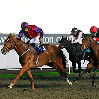 Secretinthepark and Sean Levey winning the 7.05 race