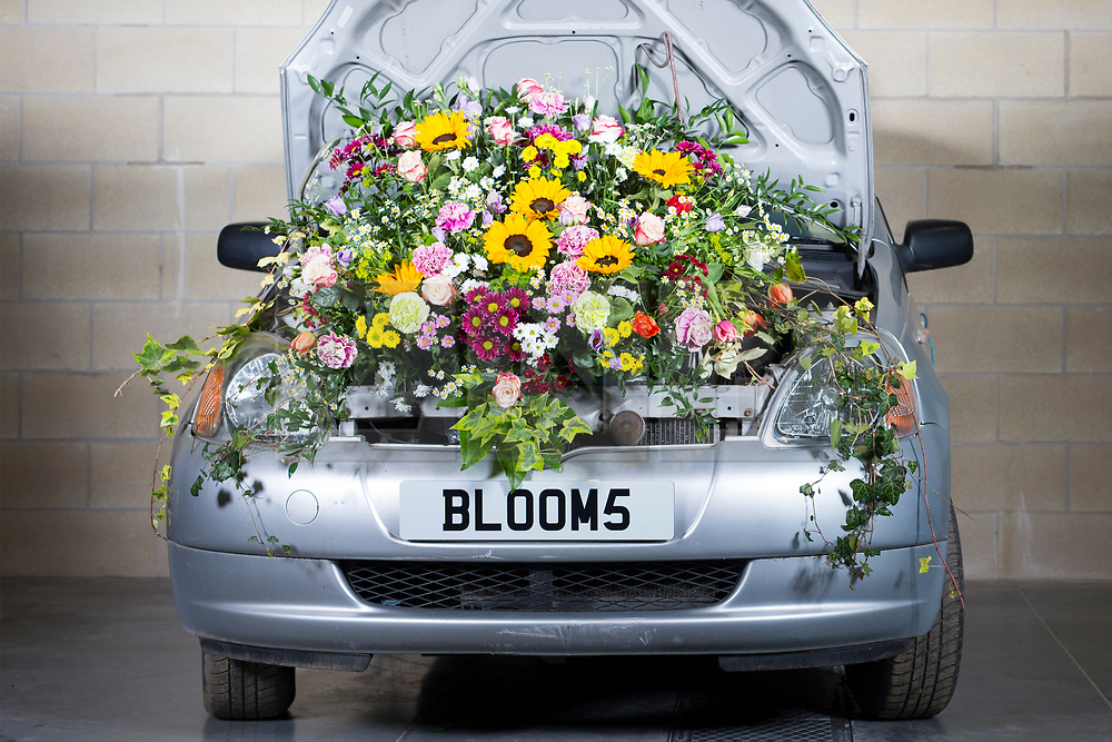 © Licensed to London News Pictures. 20/03/2017. Harrogate, UK. Picture shows the first of the Floral Bonnets car's to arrive at the Yorkshire Show ground for the Harrogate Flower Show. Floral Bonnets is part of the show's spring theme & has seen Floristry students from across Yorkshire challenged to create a floral display using real cars. The Harrogate Flower Show is the UK's largest exhibition of floral art & this years spring theme HortCouture will see a series of new features celebrating style trends in the home, garden & wardrobe. Photo credit: Andrew McCaren/LNP