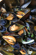 A pot of mussels