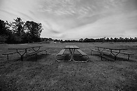 Three picnic tables in a field