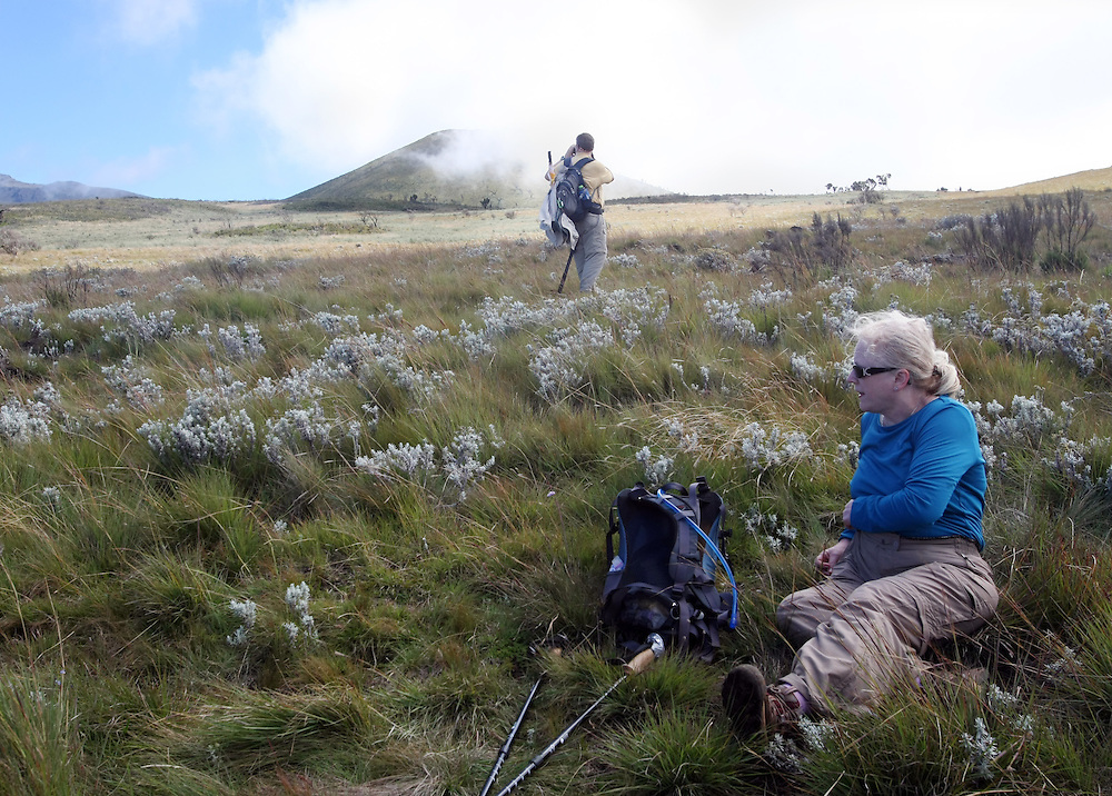 Relaxing in the meadow during a break in the climb up Mt. Kilimanjaro gives one the opportunity to enjoy the increasingly beautiful view and the change in the flora and fauna.