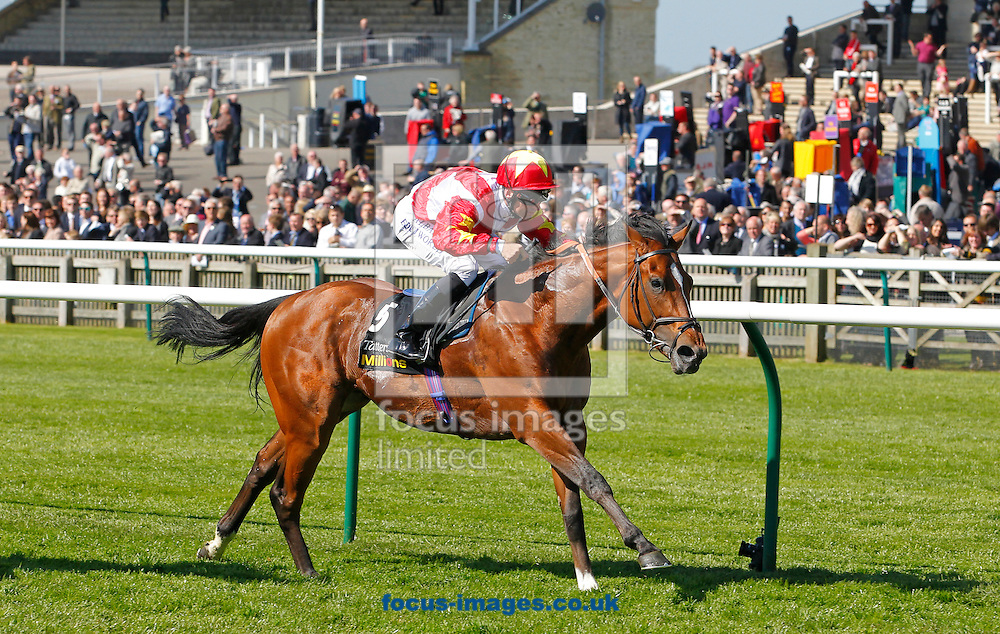 Picture by John Hoy/Focus Images Ltd +44 7516660607<br /> 16/04/2014<br /> Pat Dobbs riding Magnus Maximus winning the &pound;100,000 Tattersalls Millions 3-Y-O Sprint (Bobis Race) at Newmarket Rowley, Newmarket