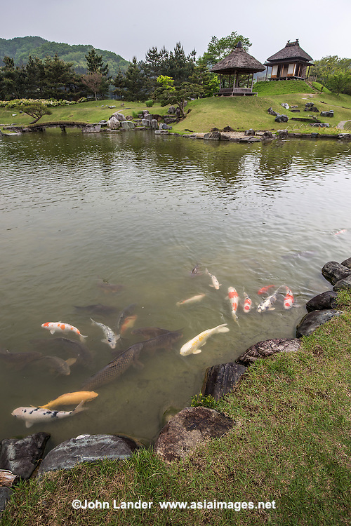 """Rakusan-en Garden Koi Pond - Rakuzan-en is a Hantei garden built by the Oda clan in the early Edo period. Its borrowed landscape is positioned as a transition period by """"migrating"""" from the """"Samurai garden"""" to """"Daimyo garden"""" portions of the venue.  The garden incorporates features from Kyoto Katsura Imperial Villa. uses mountains of Rensekizan as Kumakurasan or Kumakurayama as a scenic backdrop.  The name of Rakuzan-en comes from the story of the Analects of """"Chishahasuioraku Jinshahayamaoraku"""" which means """"the beginning of peace"""".   This daimyo feudal lord garden was made by Oda Nobukatsu  Rakusan-en opened in 2012 after a restoration project that took 10 years to complete."""