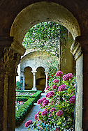 Colums frame blooming hydrangea, St. Paul of St. Remy de Provence, France