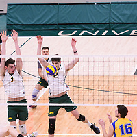 2nd year middle blocker Conal McAinsh (2) of the Regina Cougars in action during Men's Volleyball home game on November 18 at Centre for Kinesiology, Health and Sport. Credit: Arthur Ward/Arthur Images