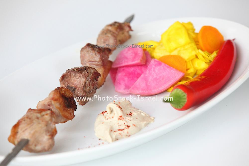 Char grilled lamb Shish Kebab Skewer with lamb fat
