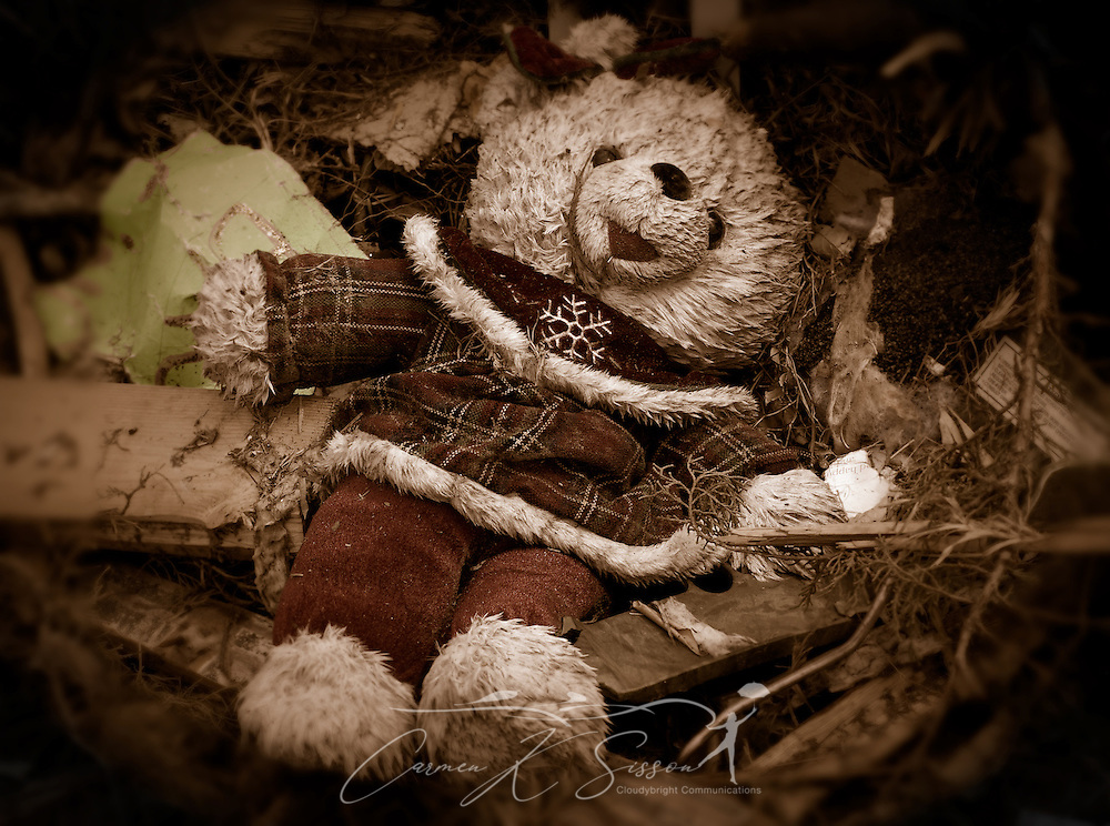 A stuffed animal lies amid storm debris in the field behind Smithville Baptist Church May 1, 2011 in Smithville, Miss. Sixteen people died in the town during the April 27, 2011, EF5 tornado, part of a storm system that swept across six states in the South, killing 342 people and injuring thousands. (Photo by Carmen K. Sisson/Cloudybright)
