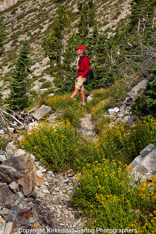 ID00385-00...IDAHO - Hiker below McGown Pass on the McGown Lakes Trail in the Sawtooth Wilderness Area.