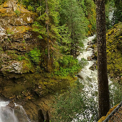 Nooksack Falls (Panorama), North Fork Nooksack River and Wells Creek, Mt. Baker-Snoqualie National Forest, WA