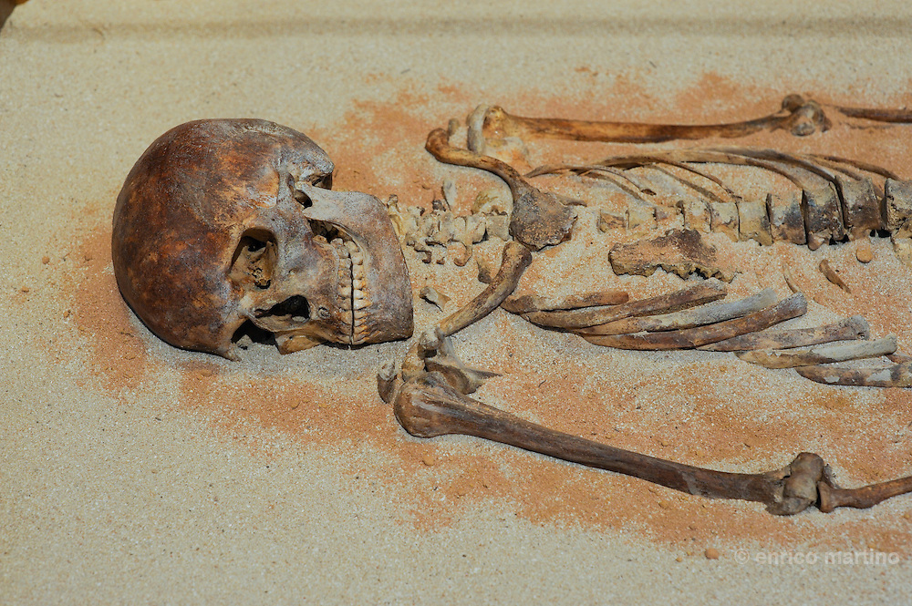 Levie Museulm, the Dame de Bonifacio (Lady of Bonifacui) skeleton, the only human fossil discovered in Corse island (6750 a.C.).