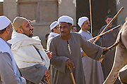 Camel broker Saleh Abdul Fadlallah negotiates with buyers while holding a camel by the tail at the Birqash Camel Market outside Cairo, Egypt. (Abdul Fadlallah is featured in the book What I Eat: Around the World in 80 Diets.) He is 40 years of age; 5 feet, 8 inches tall and 165 pounds.
