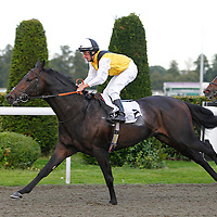 Kempton 18th September 2013