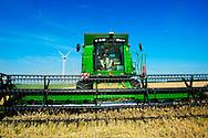 BIDDINGHUIZEN - Een loonbedrijf in Flevoland is bezig met de graanoogst. Door onder meer de tegenvallende oogst in de Verenigde Staten is de graanprijs gestegen. Daarvan profiteren de boeren in Nederland, waar wel een goede oogst is.
