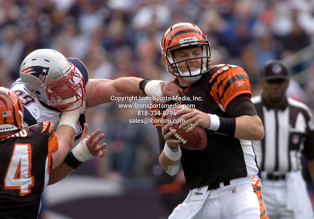 12 September 2010.   Bengals Quarterback Carson Palmer (9) about to pass while under extreme pressure from Patriot Defensive Lineman Mike Wright (99) in the third quarter.  The New England Patriots defeated the Cincinnati Bengals 38 to 24 in the 2010 season opener at Gillette Stadium in Foxboro, Massachusetts
