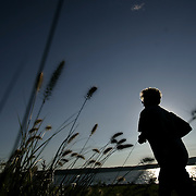 Irvington, NY / 2008 - A jogger enjoys a beautiful summer day at scenic Hudson Park at Irvington Park.  ( Mike Roy / The Journal News )