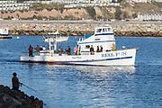 The Reel Fun Fishing Boat From Dana Point Harbor