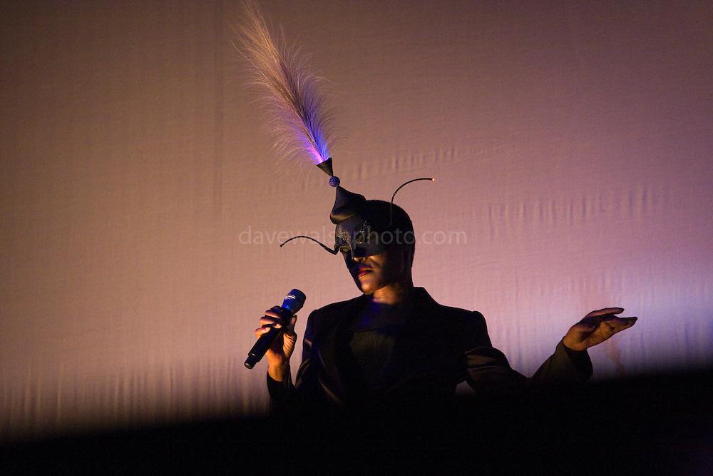 Disco Diva Grace Jones plays the Electric Picnic 2008