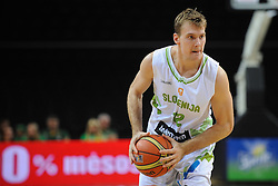 Zoran Dragic of Slovenia during friendly match between National Teams of Slovenia and Greece before World Championship Spain 2014 on August 17, 2014 in Kaunas, Lithuania. Photo by Robertas Dackus / Sportida.com