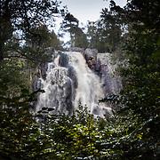 V&auml;nersborg 2010 <br /> Vattenfallet Brudsl&ouml;jan p&aring; Halleberg vattenfall berg vattendroppar skog gr&ouml;nska h&ouml;st<br /> <br /> FOTO : JOACHIM NYWALL KOD 0708840825_1<br /> COPYRIGHT JOACHIM NYWALL<br /> <br /> ***BETALBILD***<br /> Redovisas till <br /> NYWALL MEDIA AB<br /> Strandgatan 30<br /> 461 31 Trollh&auml;ttan<br /> Prislista enl BLF , om inget annat avtalas.