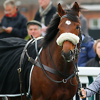 Vale Of Lingfield debut