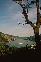 View of the Rhine River from Bacharach, Germany