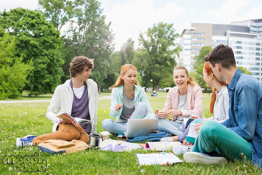 University friends studying together on grass