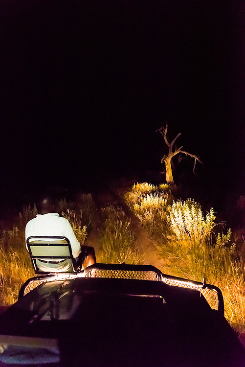 A tracker sits in a seat on the front of a safari vehicle and holds a spotlight looking for nocturnal animals on a night game drive, Kwando Concession, Linyanti Marshes, Botswana.
